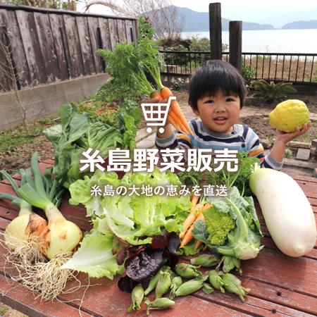 糸島野菜販売
